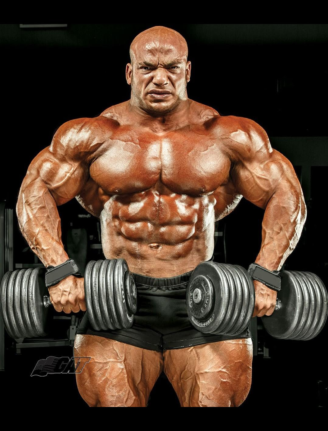 The 2016 mr olympia line upbuild muscle with muscular for The olympia